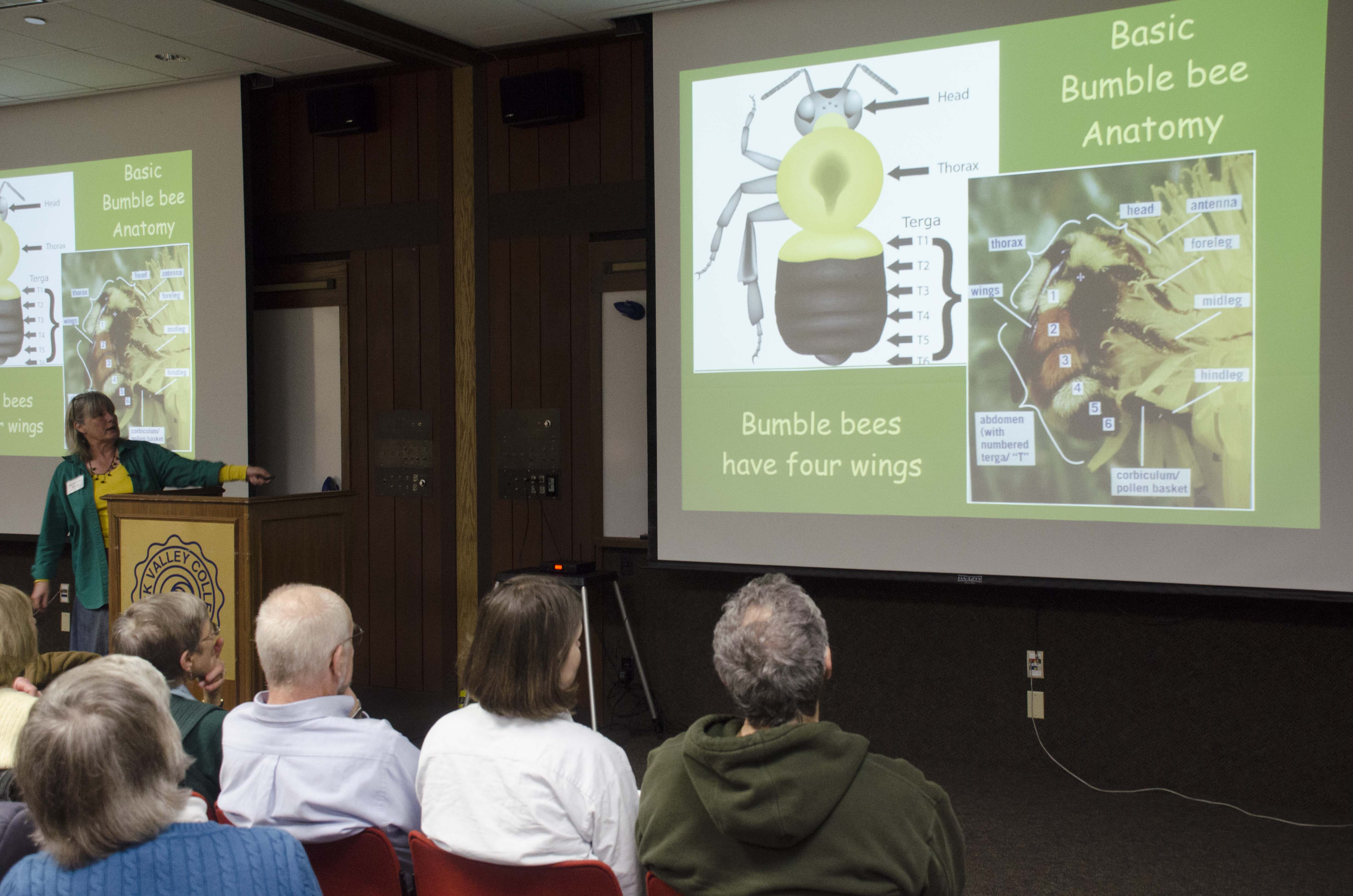 Barbara Williams'presentation about bumblebees.